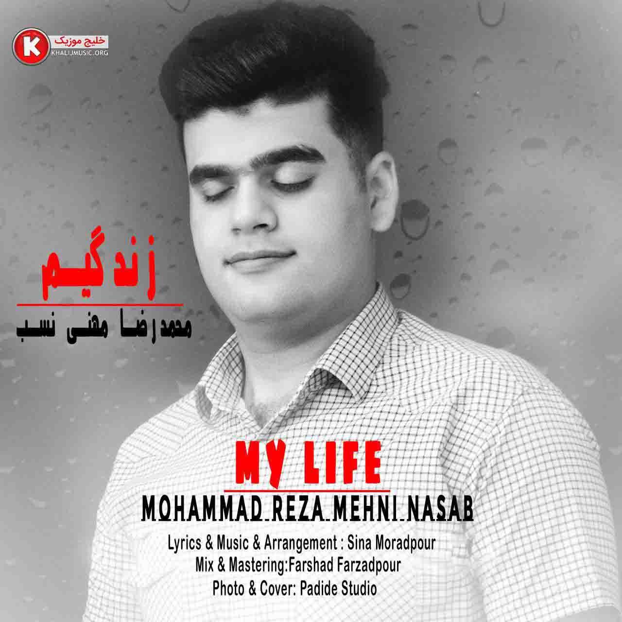 محمدرضا مهنی نسب آهنگ جدید و بسیار زیبا و شنیدنی بنام زندگیم